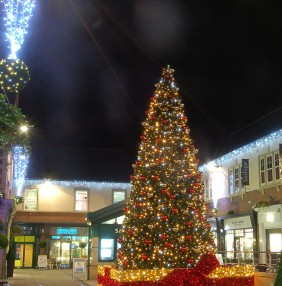 Commercial Christmas Decorations